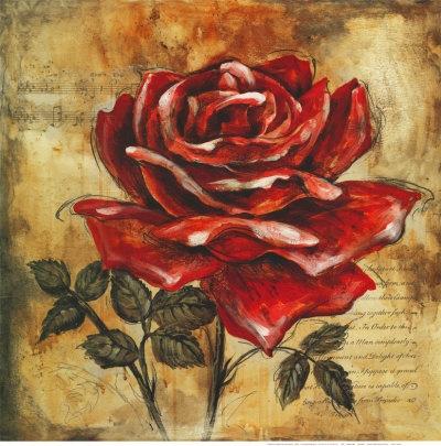 Drawn red rose A Rose Art Drawings Rose