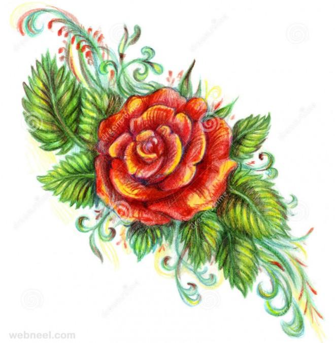 Drawn rose different flower Paintings flower Rose Drawings flower