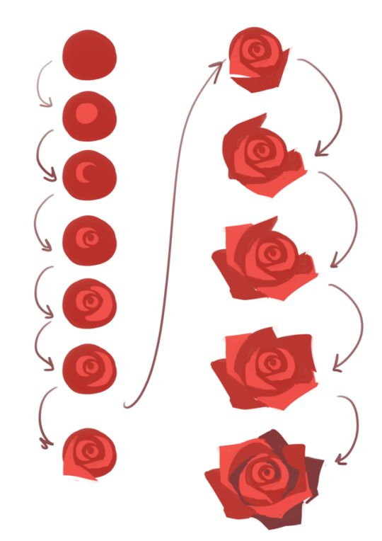 Drawn red rose base Ideas The roses #DRAWINGS AND