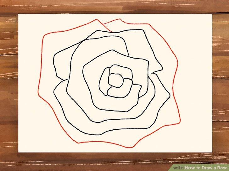 Drawn red rose base To Rose a Ways Image