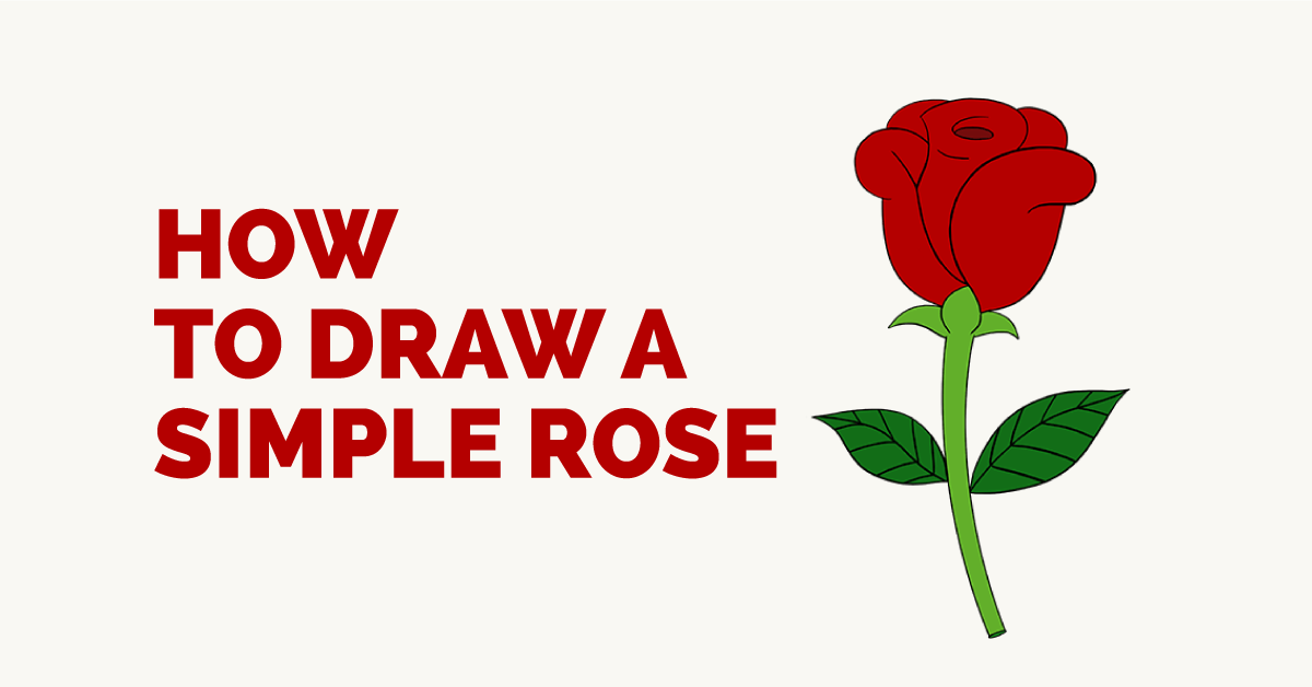 Drawn red rose base Draw in a to How
