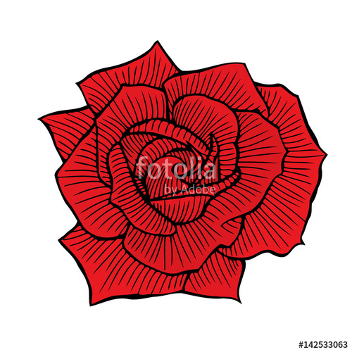Drawn red rose basic Fotolia red on  Hand