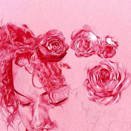 Drawn red rose biro 3 pen ballpoint Tumblr draw