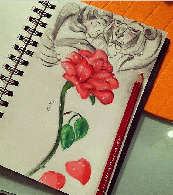 Drawn rose 11 year old Art Beauty best 25+ rose