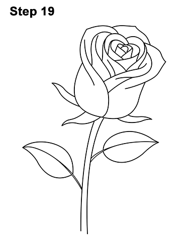 Drawn red rose black and white step by step Step Rose Red How to