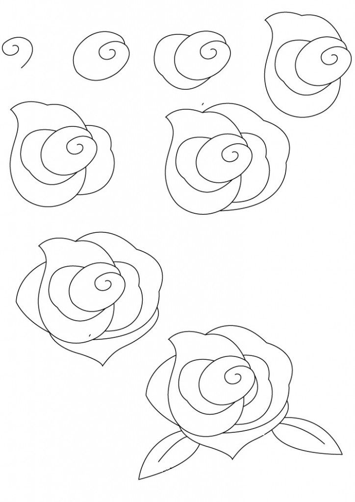 Drawn red rose black and white step by step Best Flowers ideas  roses