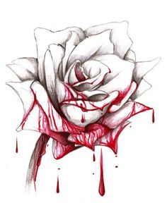 Drawn red rose bleeding love Mean It roses blood can