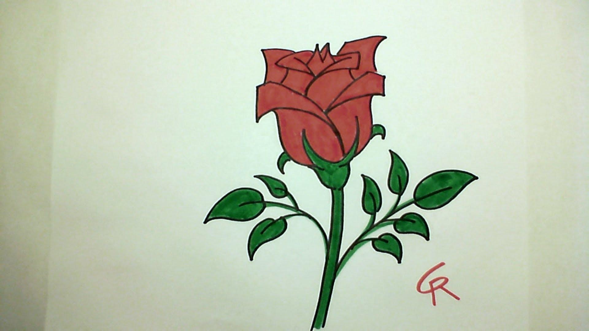 Drawn rose pretty rose How Learn Bloom iCanHazDraw! YouTube