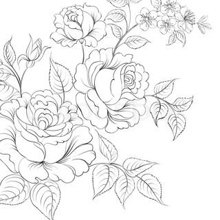 Drawn red rose bunch Best for on illustration Red