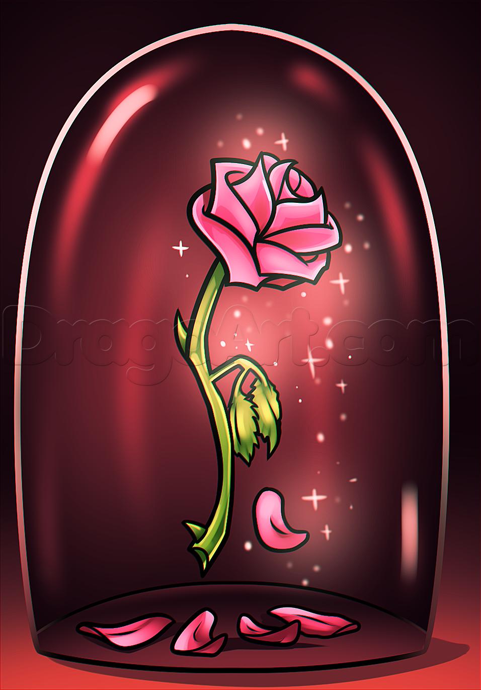 Drawn red rose cartoon Beauty beast Beginnger &