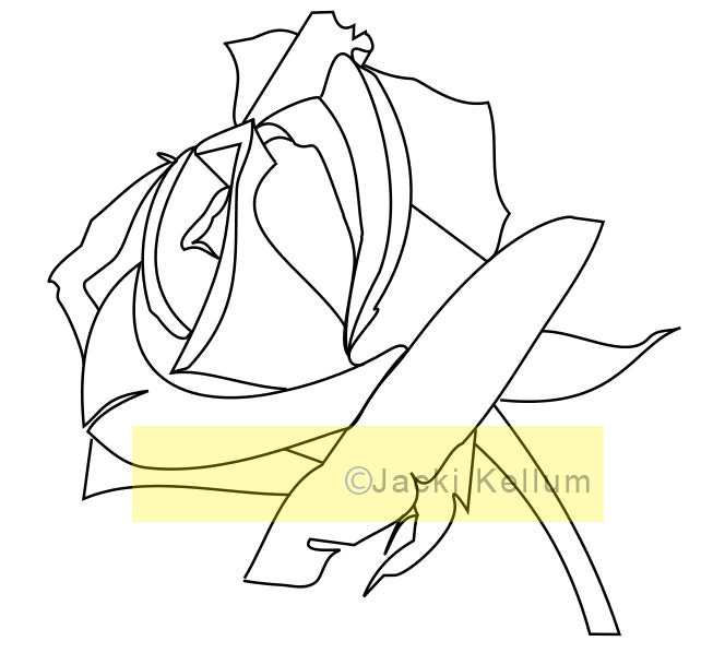 Drawn red rose complex – Difference Jacki The Tutorials