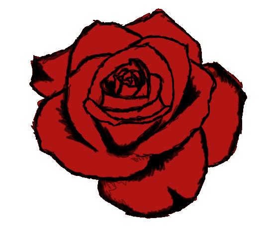 Drawn red rose detailed Roses  Version Page Drawn