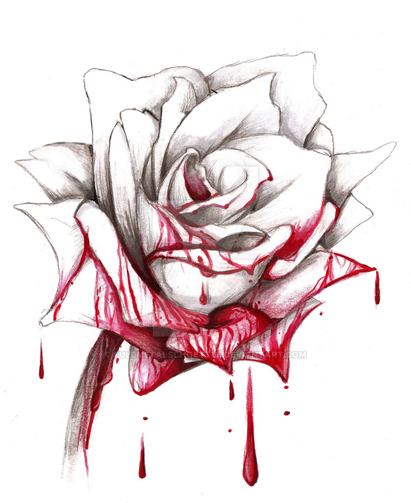 Drawn red rose deviantart Fullmetalschoettle DeviantArt by bloody on