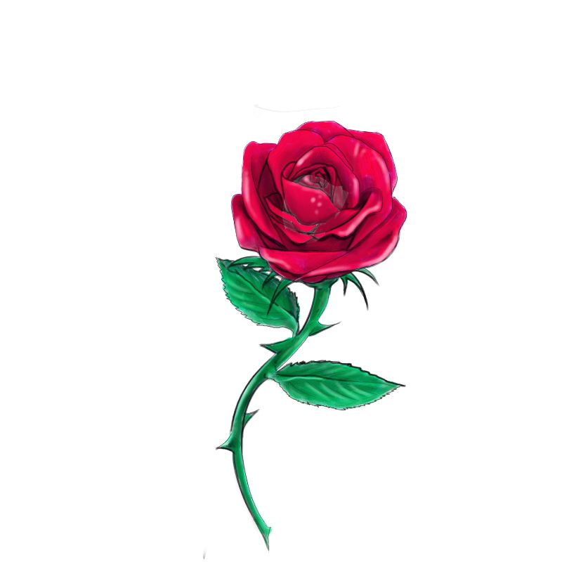Drawn red rose deviantart Daelyth DeviantArt by red on