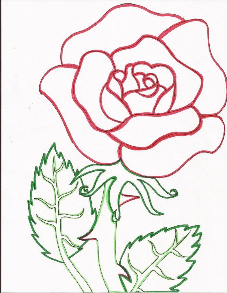 Drawn red rose deviantart DeviantArt on Red Line Line
