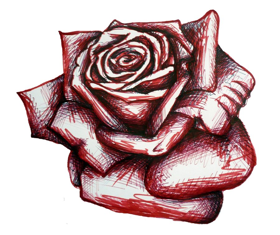 Drawn red rose draw a Bunny82 Art Drawing Clip Library
