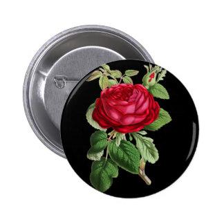 Drawn red rose drawed Pinback button draw rose Roses
