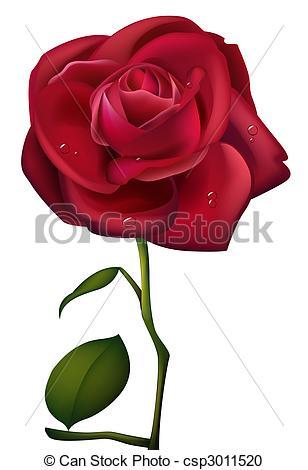 Drawn red rose drawed  and waterdrop Rose Images