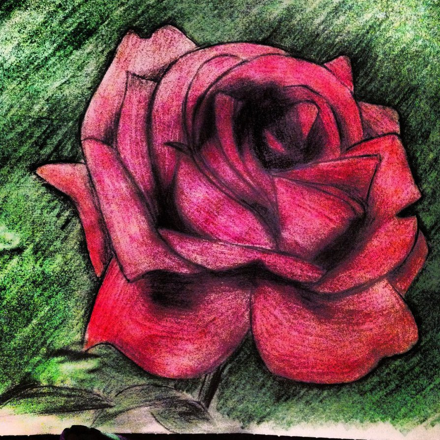 Drawn red rose easy Images Rose Red Drawing Red