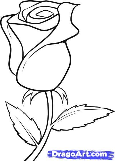 Drawn red rose easy Draw to on roses Flowers