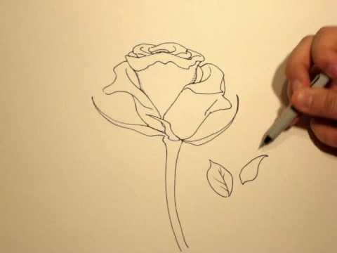 Drawn red rose emo How a Draw  YouTube