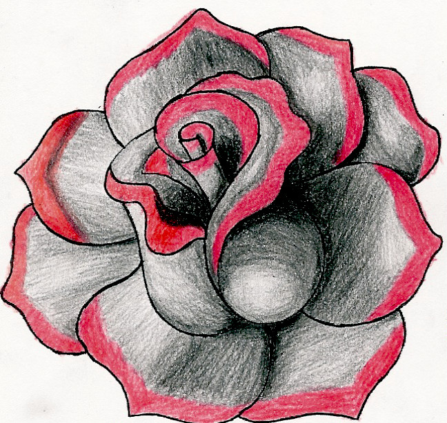 Drawn red rose emo Roses Roses Gallery Red Free