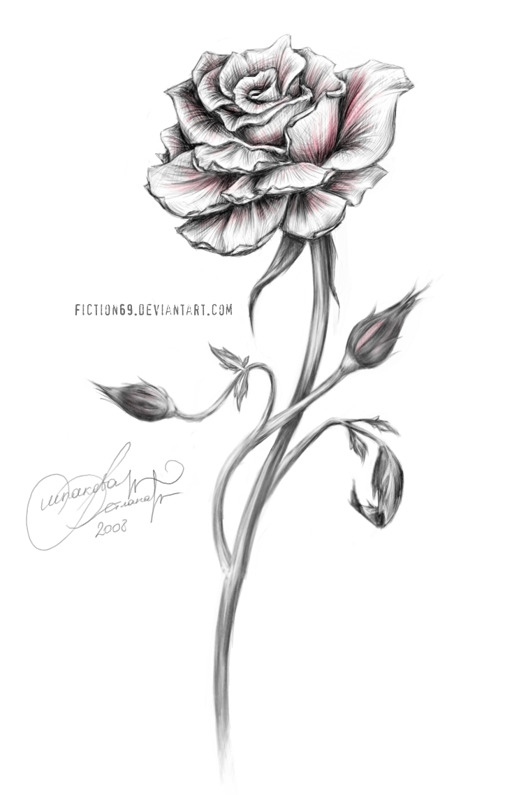 Drawn red rose emo Rose Drawing Thorns Red Clip