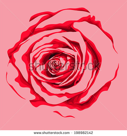 Drawn red rose flower abstract The effect watercolor abstract rose