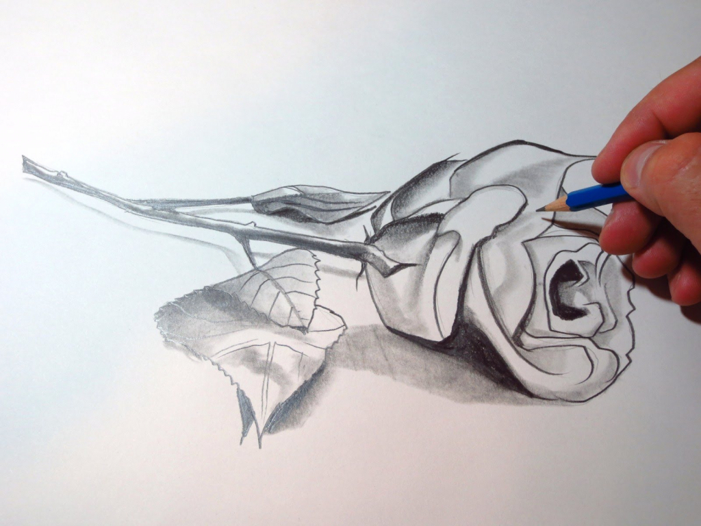 Drawn red rose glass vase In Red Time 3D of