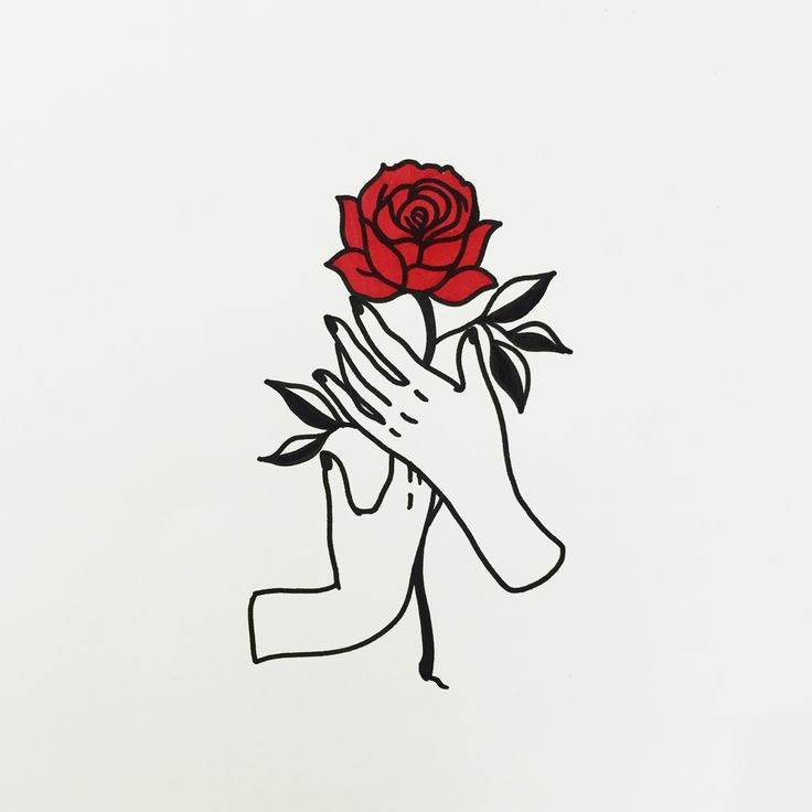 Drawn red rose graphic On outline outline 25+ Rose