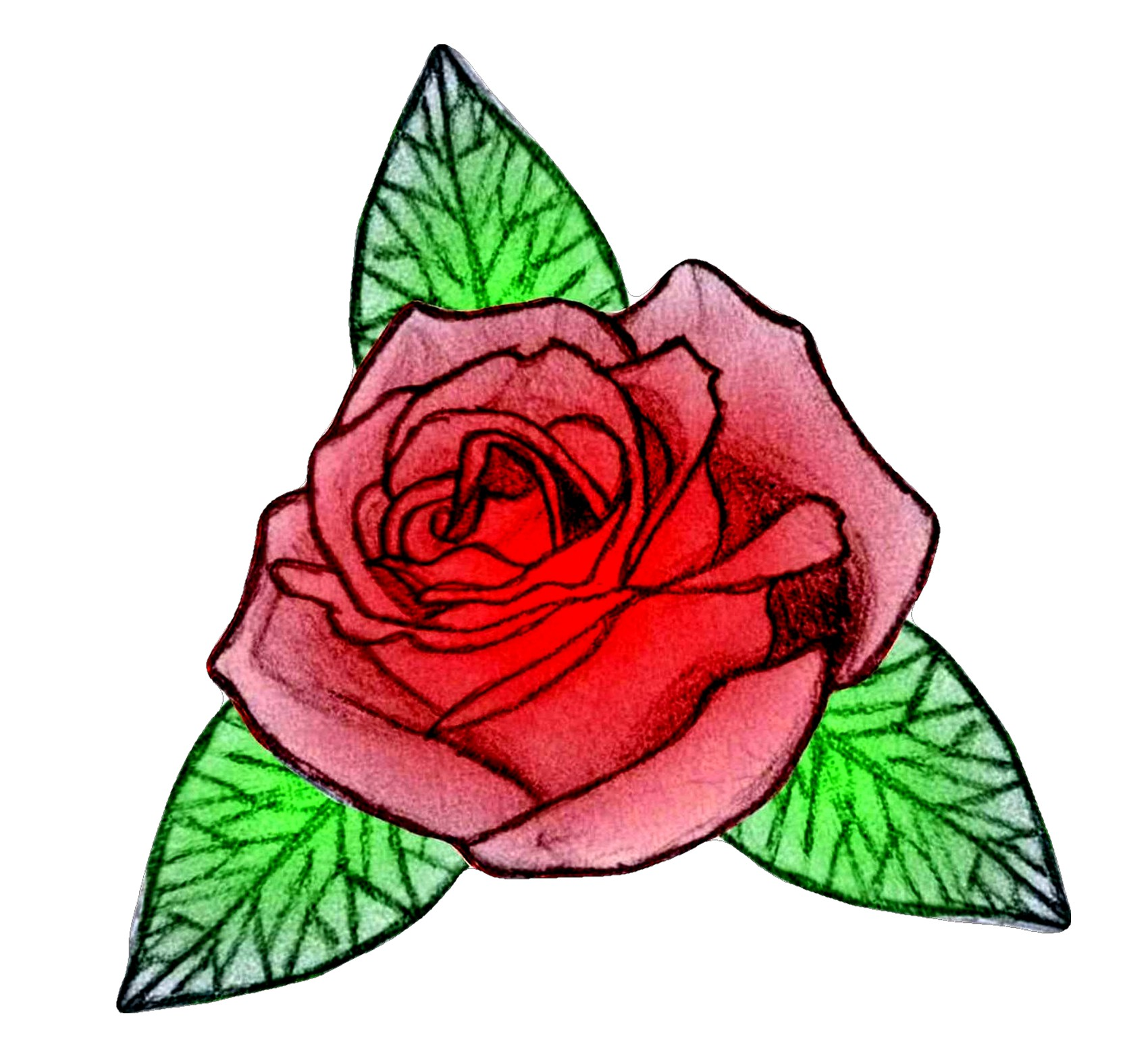 Drawn red rose hand drawn Rose Fluffytheartist by by Fluffytheartist