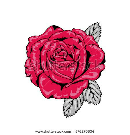 Drawn red rose illustration a Style from Tattoo flower drawn