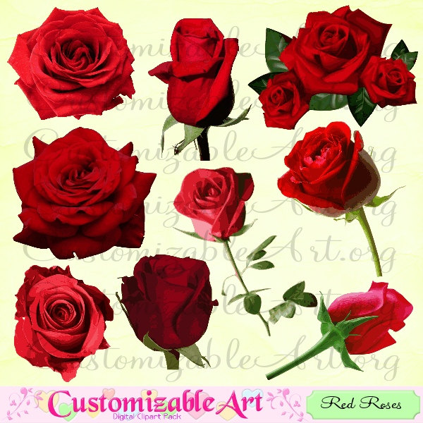 Drawn red rose individual Bright Images Etsy bouquet Red