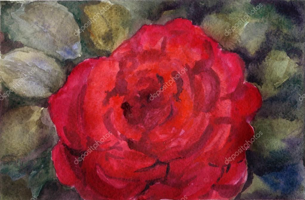 Drawn red rose leaf Rose rose Stock #119419654 on