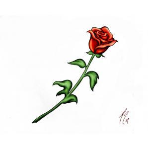 Drawn red rose long stem Fhqpphq0 red rose rose (298×298)