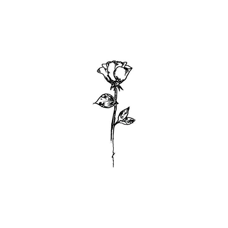 Drawn rose tiny rose Pinterest more tattoos on 25+
