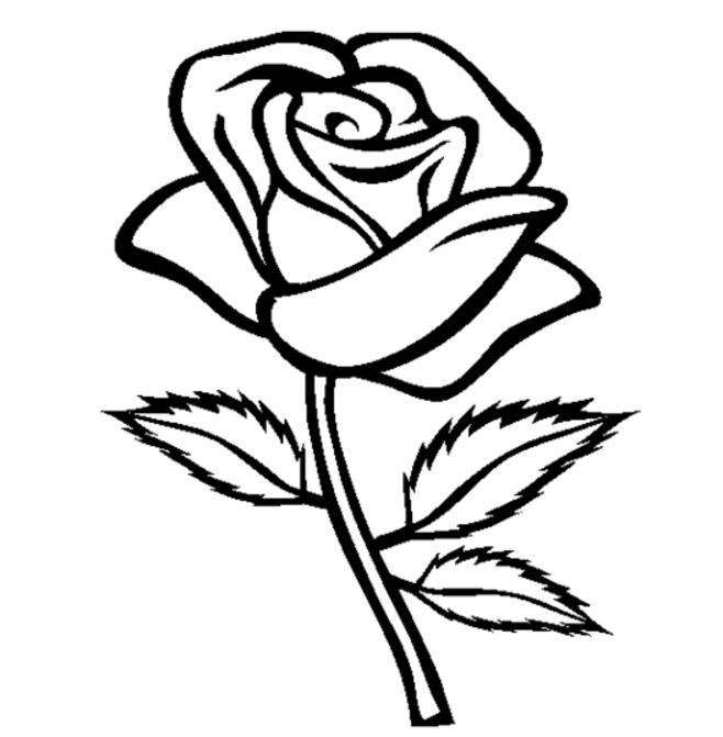 Drawn red rose minimalist Minimalist Coloring Desktop Rose Minimalist