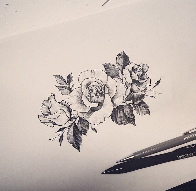 Drawn red rose minimalist Drawing to simple on have