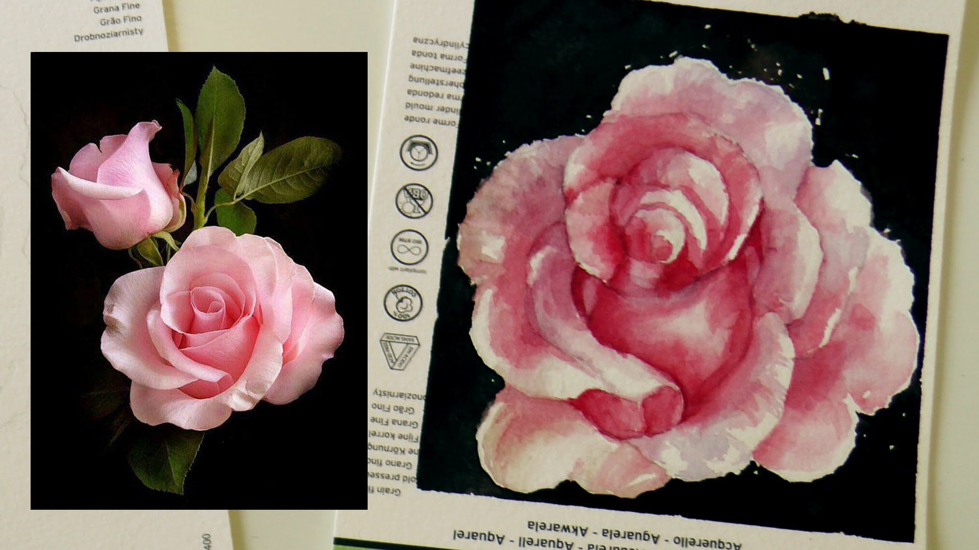 Drawn red rose monochromatic Tutorial: Tutorial: to TV how