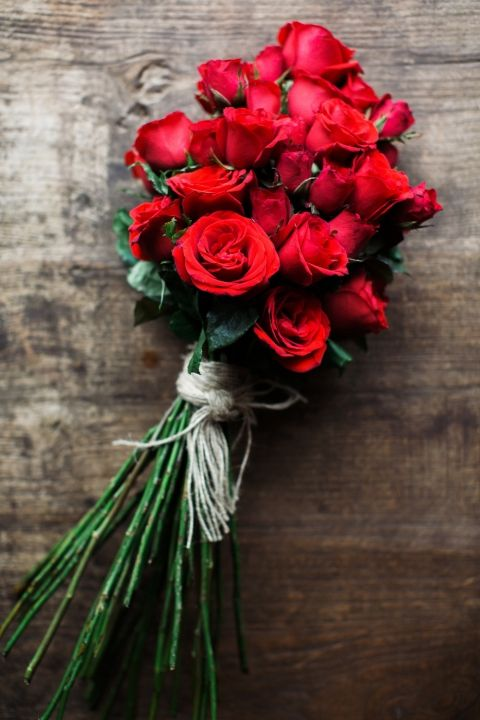 Drawn red rose most beautiful single Ideas and Red roses roses