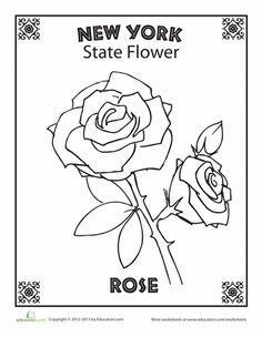 Drawn red rose new york state York flower? New flower the