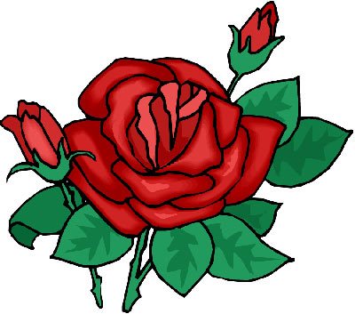 Drawn red rose one 353 Red Rose to Pinterest