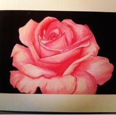 Drawn red rose pastel drawing Tutorial Flower Google paintings pastel