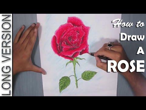 Drawn red rose pastel drawing How Pastel to Rose Rose