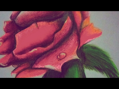 Drawn rose soft pastel COLOURS How To COLOURS Rose