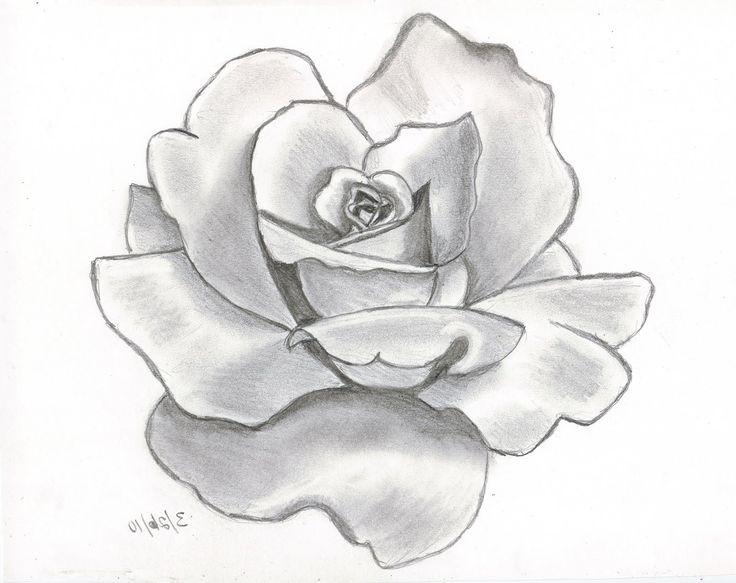 Drawn rose pencil for kid To Easy Flower Pinterest rose