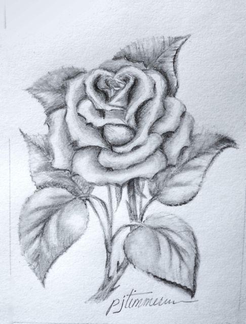 Drawn rose hard Pencil 20+ of Pencil flowers