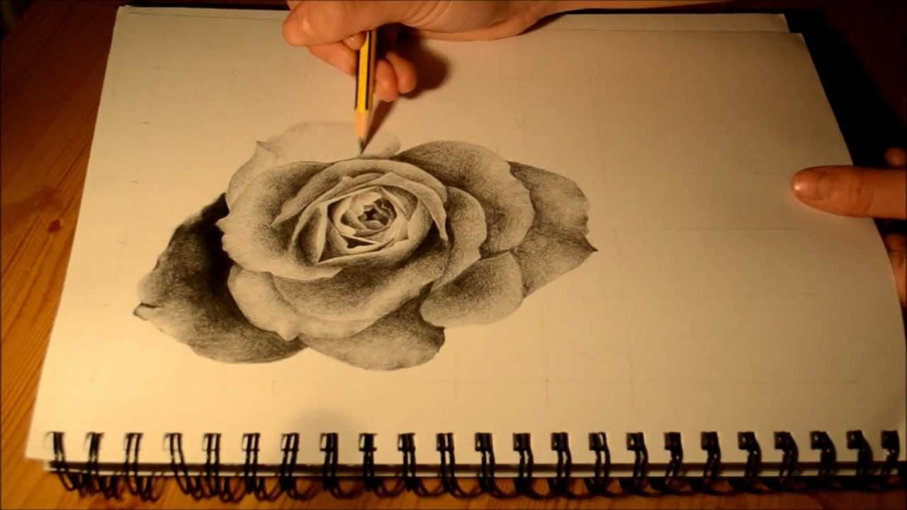 Drawn red rose pencil step Red Drawing Red Drawing knumathise: