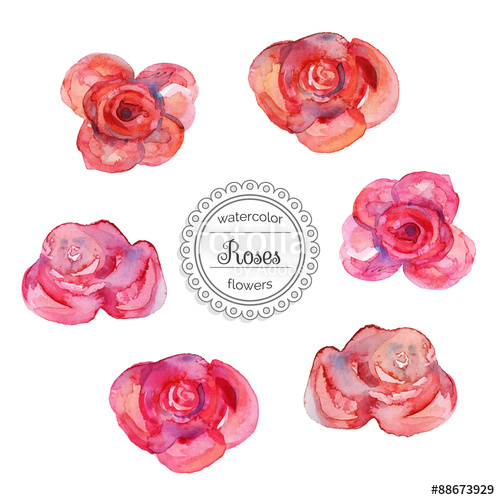 Drawn red rose pink rose Watercolor red Set for roses