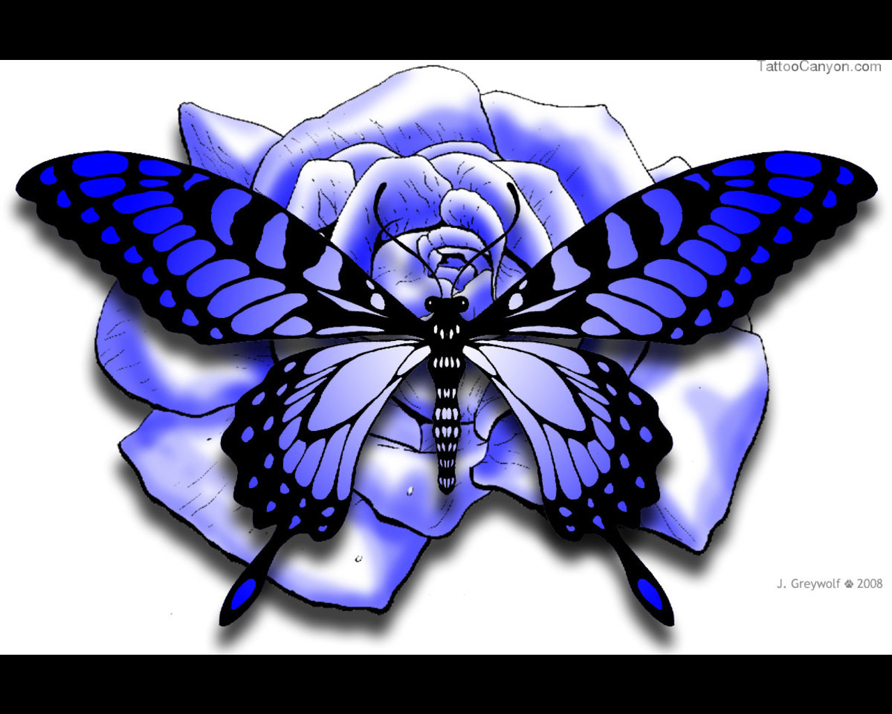 Drawn red rose branch Purple Butterfly Designs Tattoo Rose